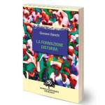 Libro La formazione disturba, di Giovanni Bianchi