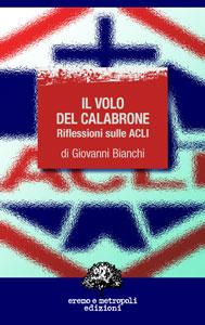 Il volo del calabrone. Riflessioni sulle ACLI. Giovanni Bianchi.